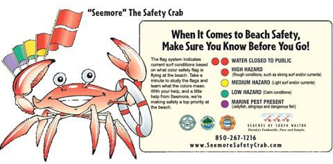 Water And Beach Safety Tips Beach Safety Destin Beach Beach Lifeguard