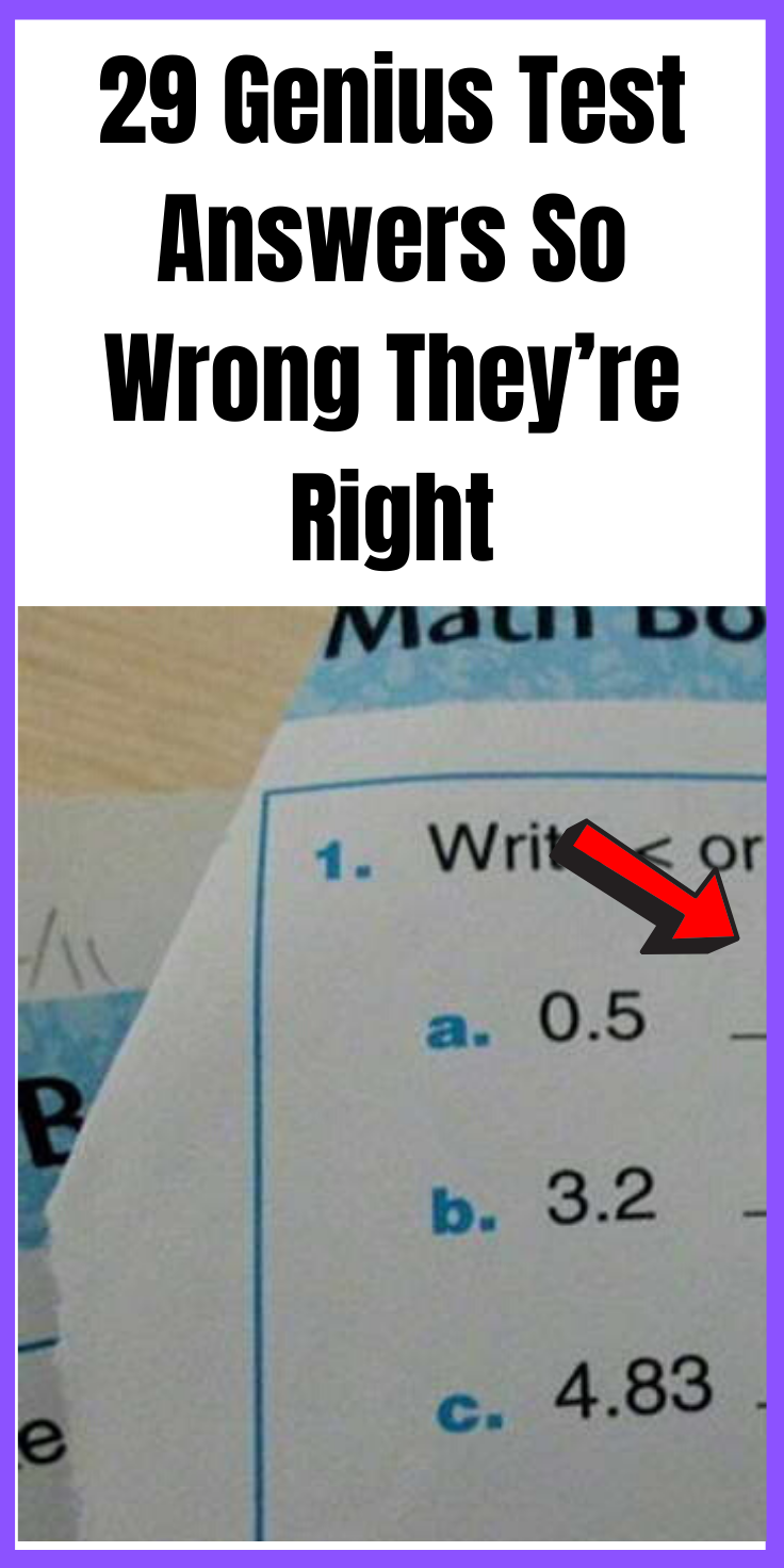 29 Genius Test Answers So Wrong They're Right | Genius ...