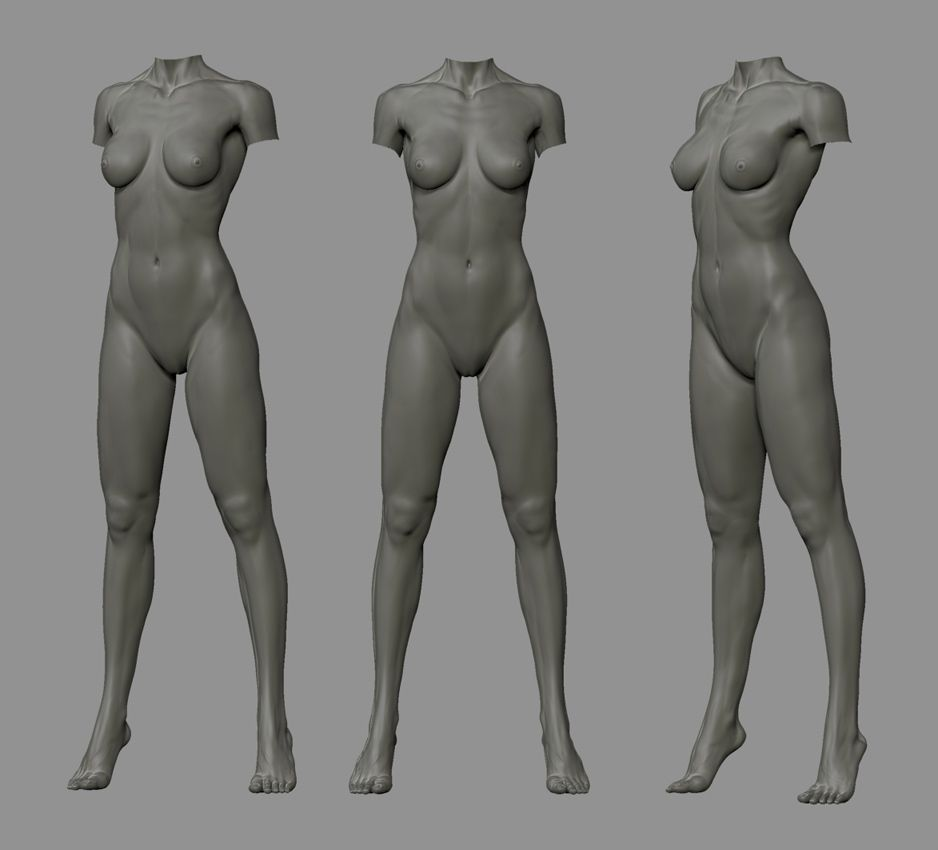 Pin by Roman Makarenko on anatomy   character proportions   topology ...