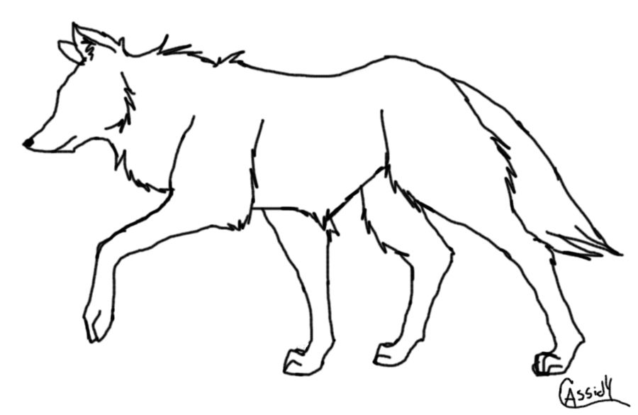 Image result for how to draw a wolf pup step by step | Wolves ...