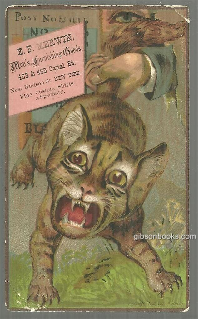 Victorian Trade Card for E. F. Merwin New York Men's Furnishing Goods with Cat