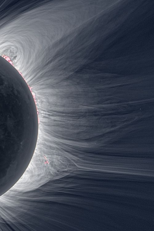 Only in the fleeting darkness of a total solar eclipse is the light of the solar corona easily visible.
