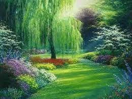 Weeping Willow Tree- (Sit here and read) = Peço humildemente a sua bênção, Senhor de toda a Luz, Caminho, verdade e vida.  Jesus, querido Mestre do Amor, mesmo ferido e cheio de dor, ajude-me a recomeçar! Amém!