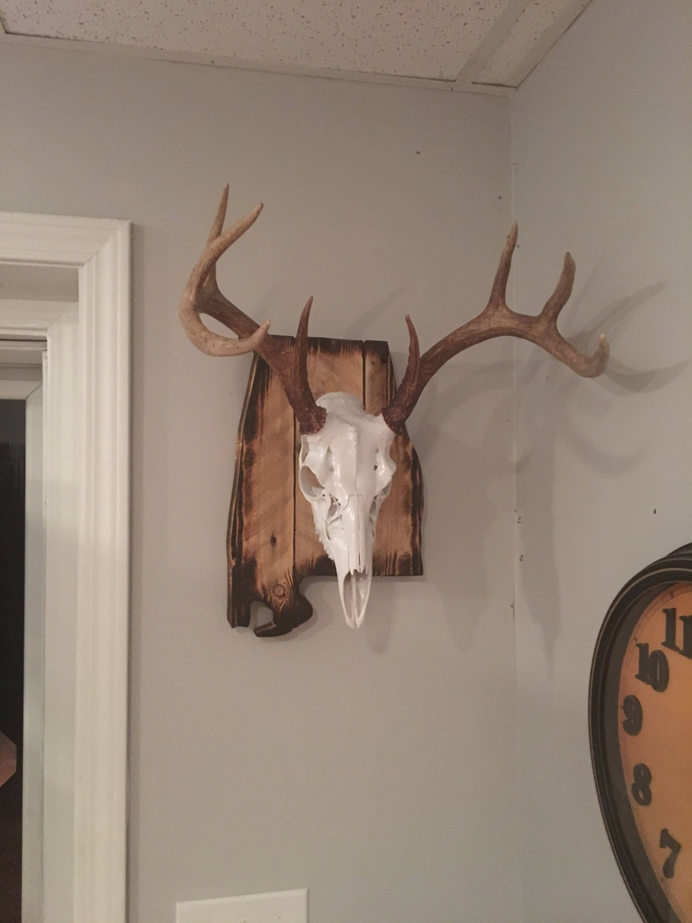 Excited To Share The Latest Addition To My Etsy Shop Alabama State Europeon Mount Plaque Http Etsy Me 2hv3b7g Deer Mount Decor Deer Antler Decor Deer Decor