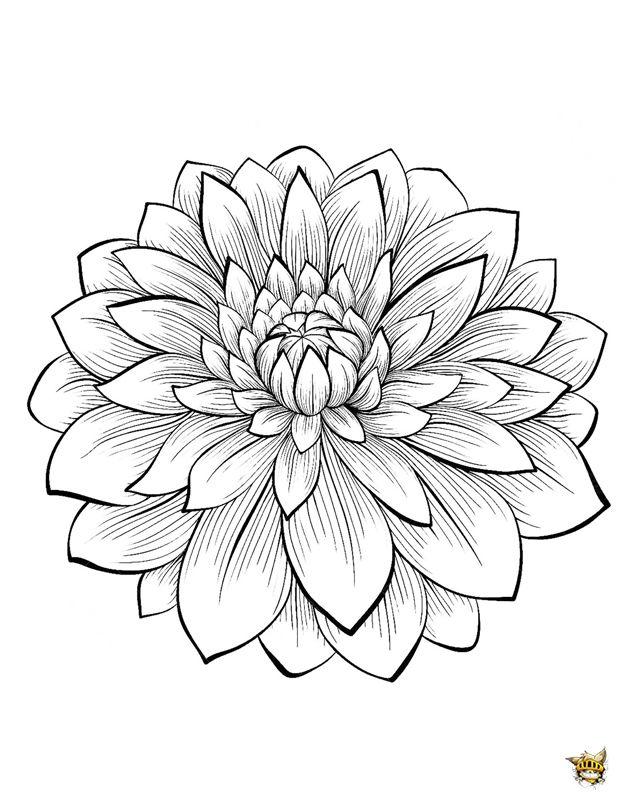 Afbeelding Peper Kleurplaat Mandala Bloemen Kleurplaat