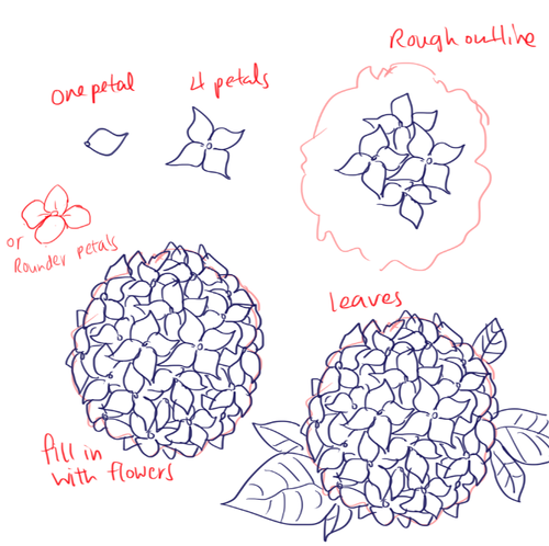 Almost As Cool As You Flower Drawing Tutorials Flower Drawing Flower Drawing Tumblr