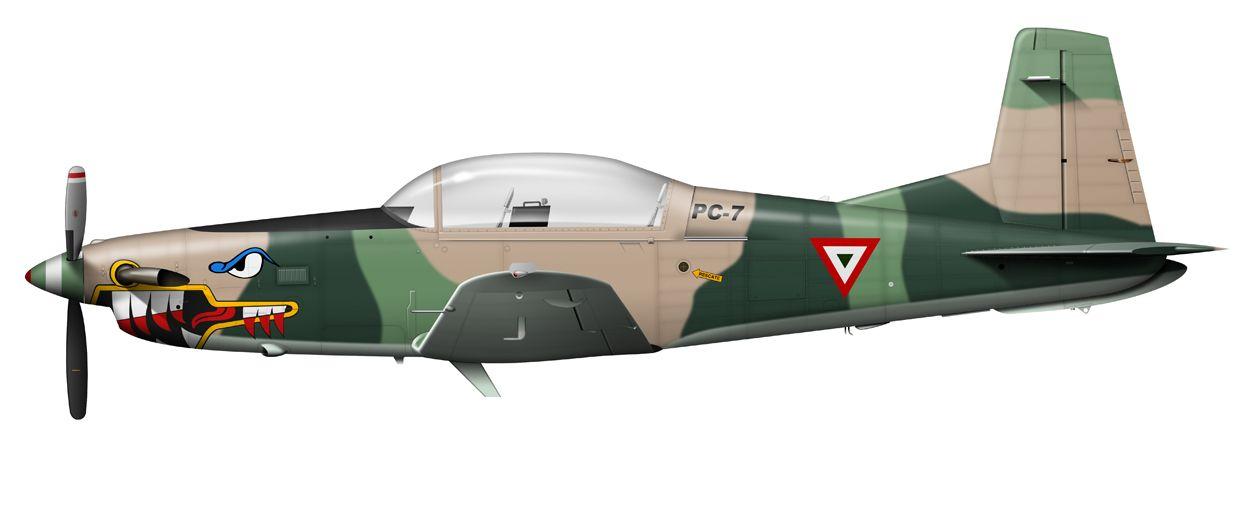 Mexican Air Force. Pilatus PC-7 / PC-9. Shark Teeth | guerreros del ...
