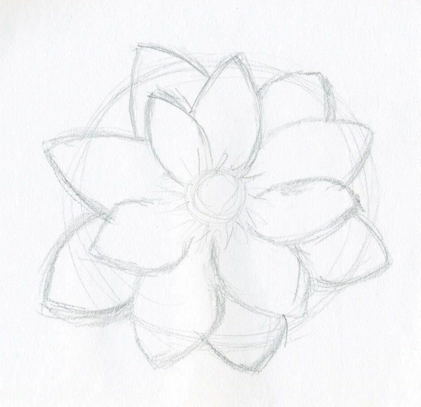 Pencil Drawings Of Flowers Art <b>flower sketches</b> on pinterest ...