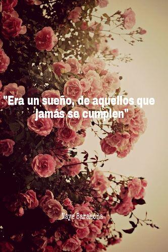 Rosas Tumblr Frases De Amor Frases De Sentimientos Y Frases