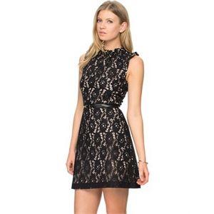 Oasis - High Neck Lace Dress - Dresses (Black)  http://sydneyfashionsale.com/tag/dresses/