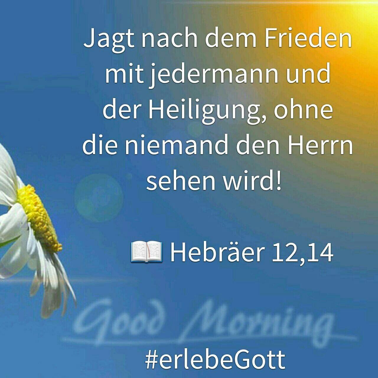 Vers des Tages   Jagt nach dem Frieden mit jedermann und der Heiligung, ohne die niemand den Herrn sehen wird!          Hebräer 12,14  #erlebeGott