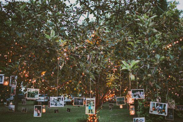 Wedding Photos Decorations Hanging