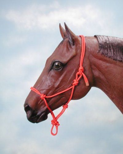 Rope Horse Halter, Pink by J.T. International. $5.90. Best selling poly nylon rope halters are fully adjustable and designed to fit snugly. Throat knot should touch the horse's throat latch, ropes from that knot to the crown should come up behind the jaw bone. JTW5251420
