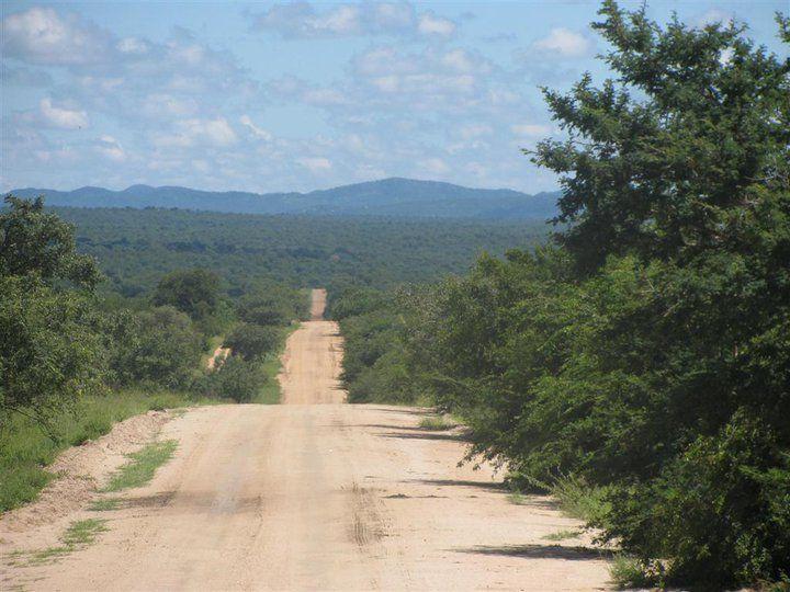 Road to Daktari, South Africa