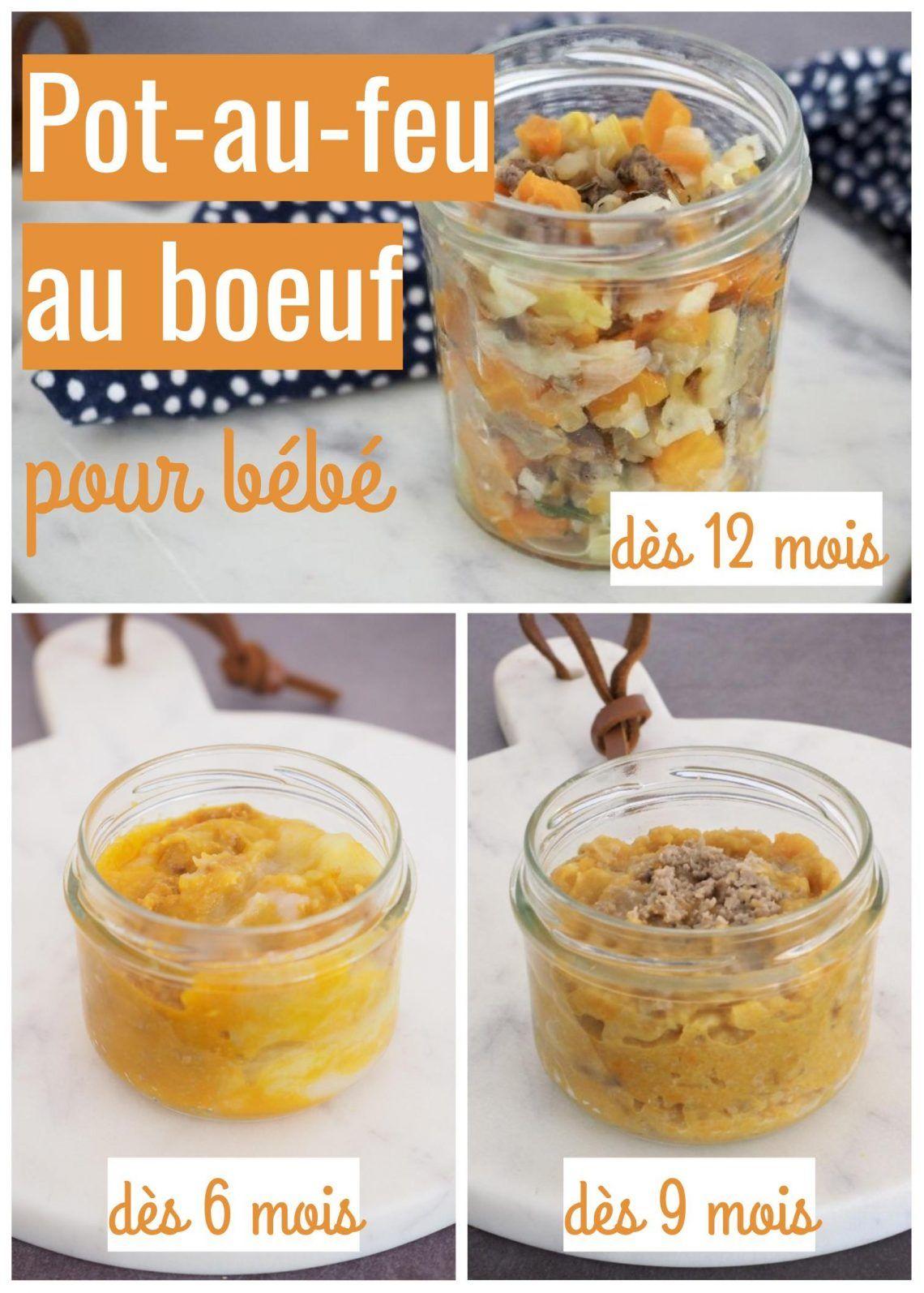 Petit Pot Au Feu Au Boeuf Cuisinez Pour Bebe Recette Aliments Pour Bebe Faits Maison Repas Pour Bebe Faits Maison Recette