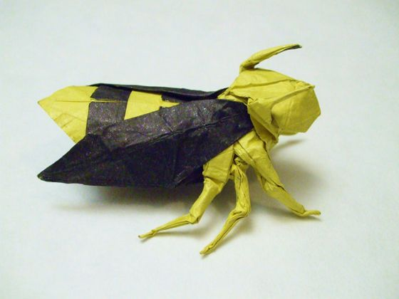 Neals Origami Bumblebee Chapter