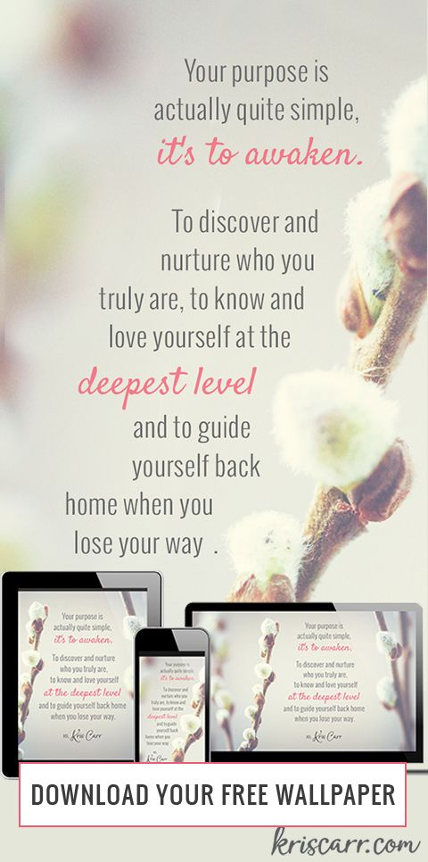 The Myth Of Finding Your Purpose Affirmations Wisdom Pinterest