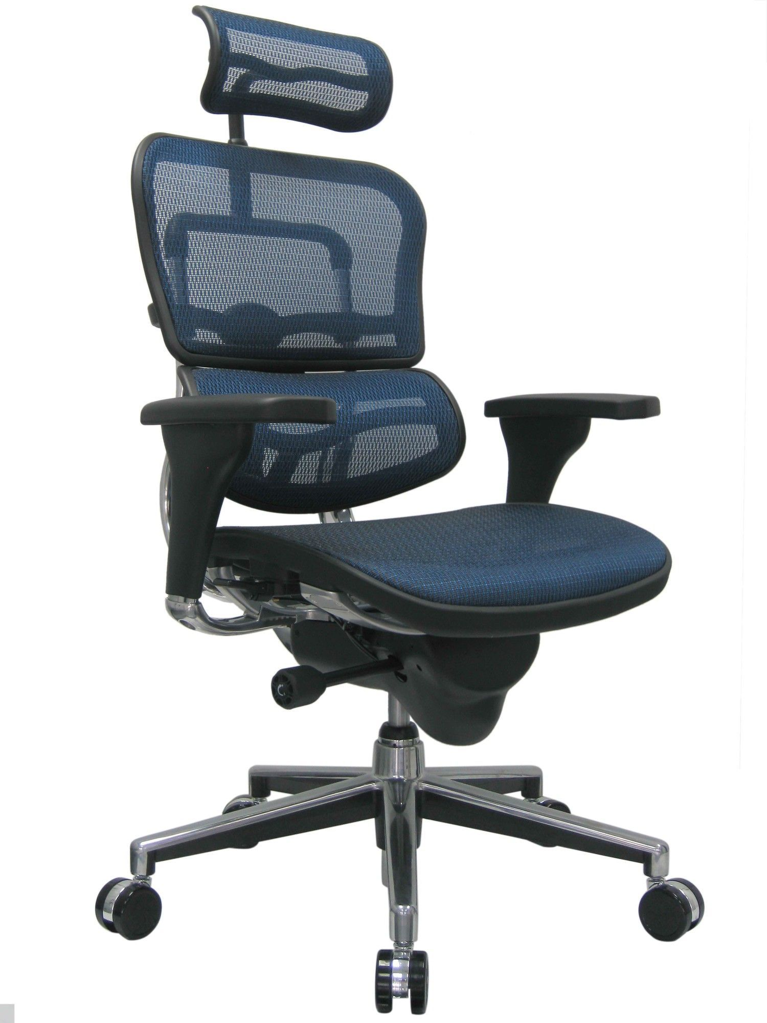 Ergohuman High Back Mesh Managers Chair With Arms Best Office