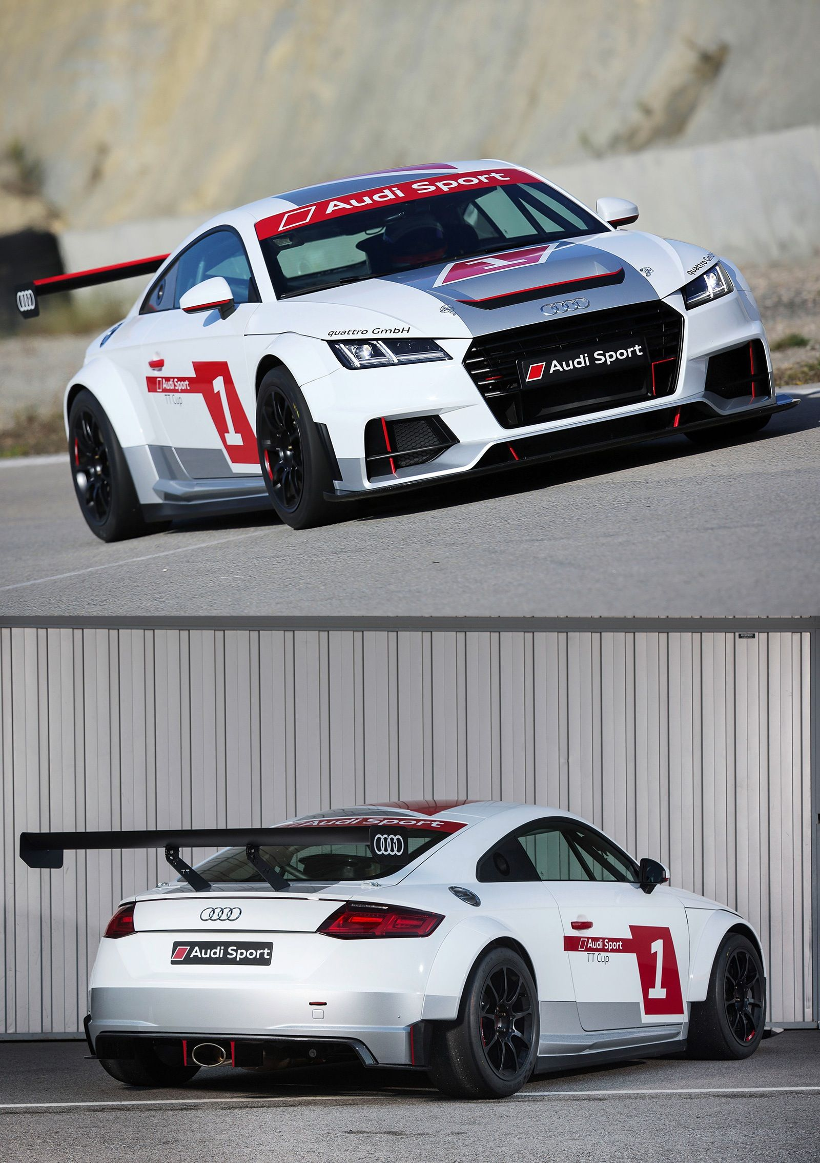 Audi tt cup factory livery