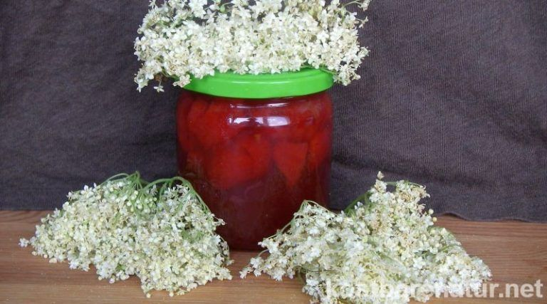 Photo of Traumhafte Holunderblüten-Marmelade mit Erdbeeren – Kostbare…