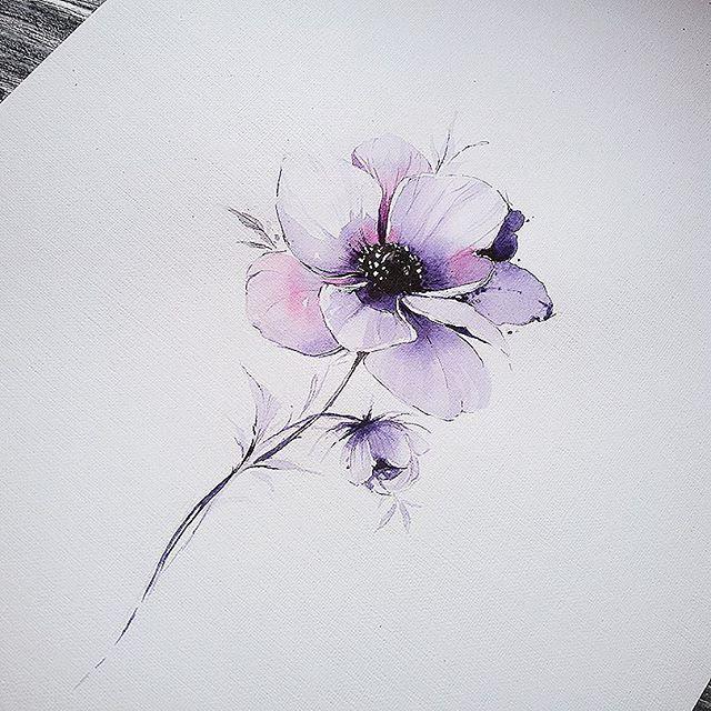 Anemone Watercolorillustration Illustration Artmagazine Artgalery Worldofartists Art Spotlight Sketch Daily Artga Flower Tattoos Anemone Tattoo Tattoos