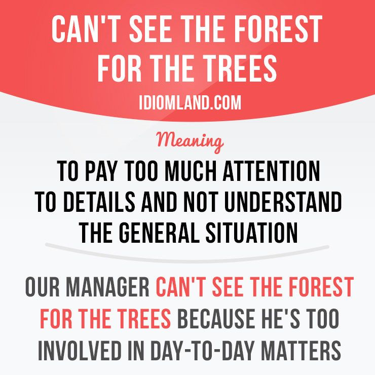 Can T See The Forest For The Trees Means To Pay Too Much Attention To Details And Not Understand The General Idioms And Phrases English Idioms Learn English