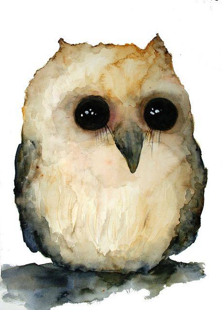 Double Rainbows In My Attic Bird Art Animal Art Owl Watercolor