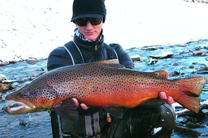 Impressive Brown Trout Out Of Northern Utah Fish Fishing Pics Fly Fishing Girls