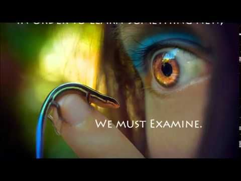 Abraham Hicks - Justice isn't about fairness - YouTube