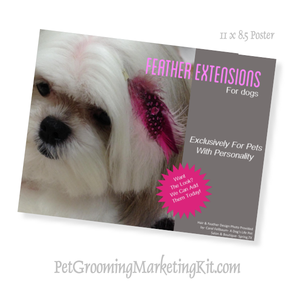 Dog Grooming Feather Extensions Sales Program Dog Grooming Salons Dog Grooming Grooming