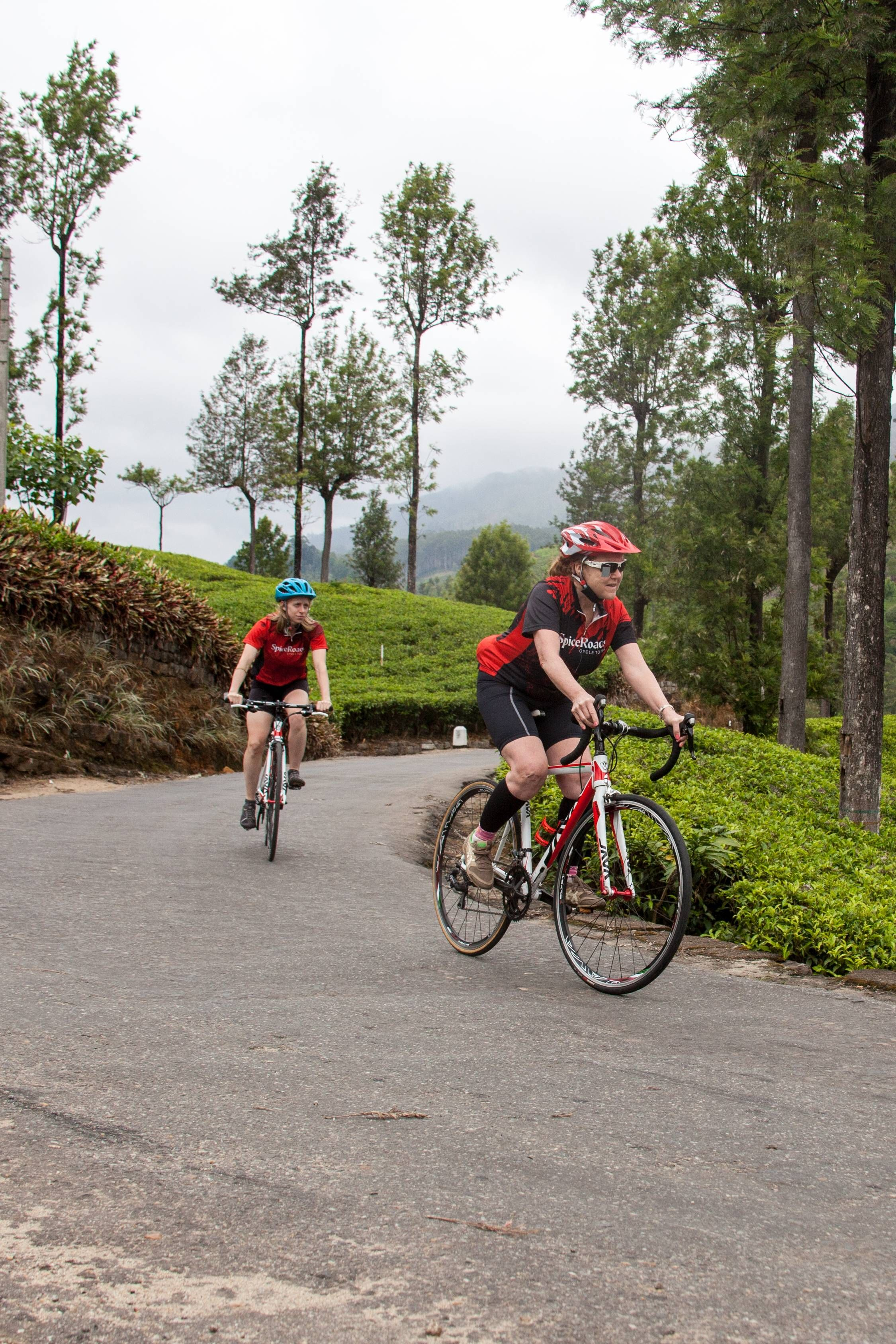 Take This Road Bike Trip If You Love Long Cycling Trips On Flat