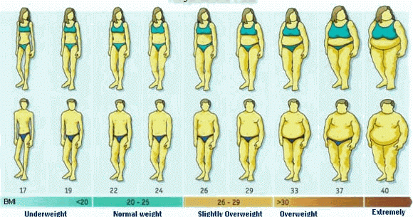 Gm Diet Ideal Weight Chart For Men  Women  General Health