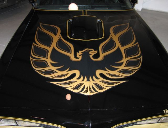 Image result for 70's trans am hood decal | car ...