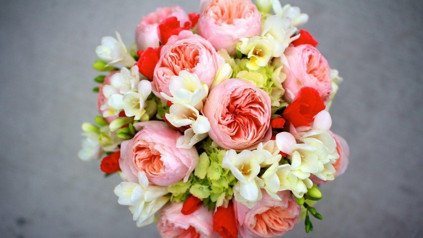 Flowers by samuel david lehrer most beautiful flowers pinterest beautiful flowers izmirmasajfo