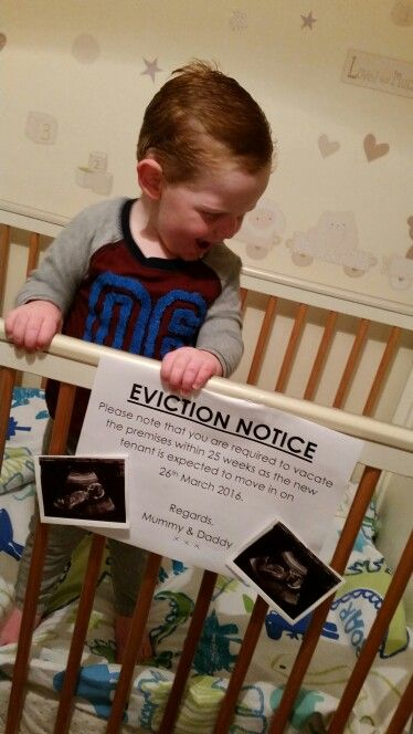 Pregnancy announcement eviction notice from cot older sibling - eviction notice