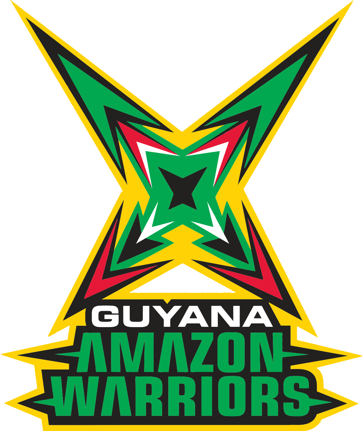 Image result for guyana amazon warrior flag Amazon