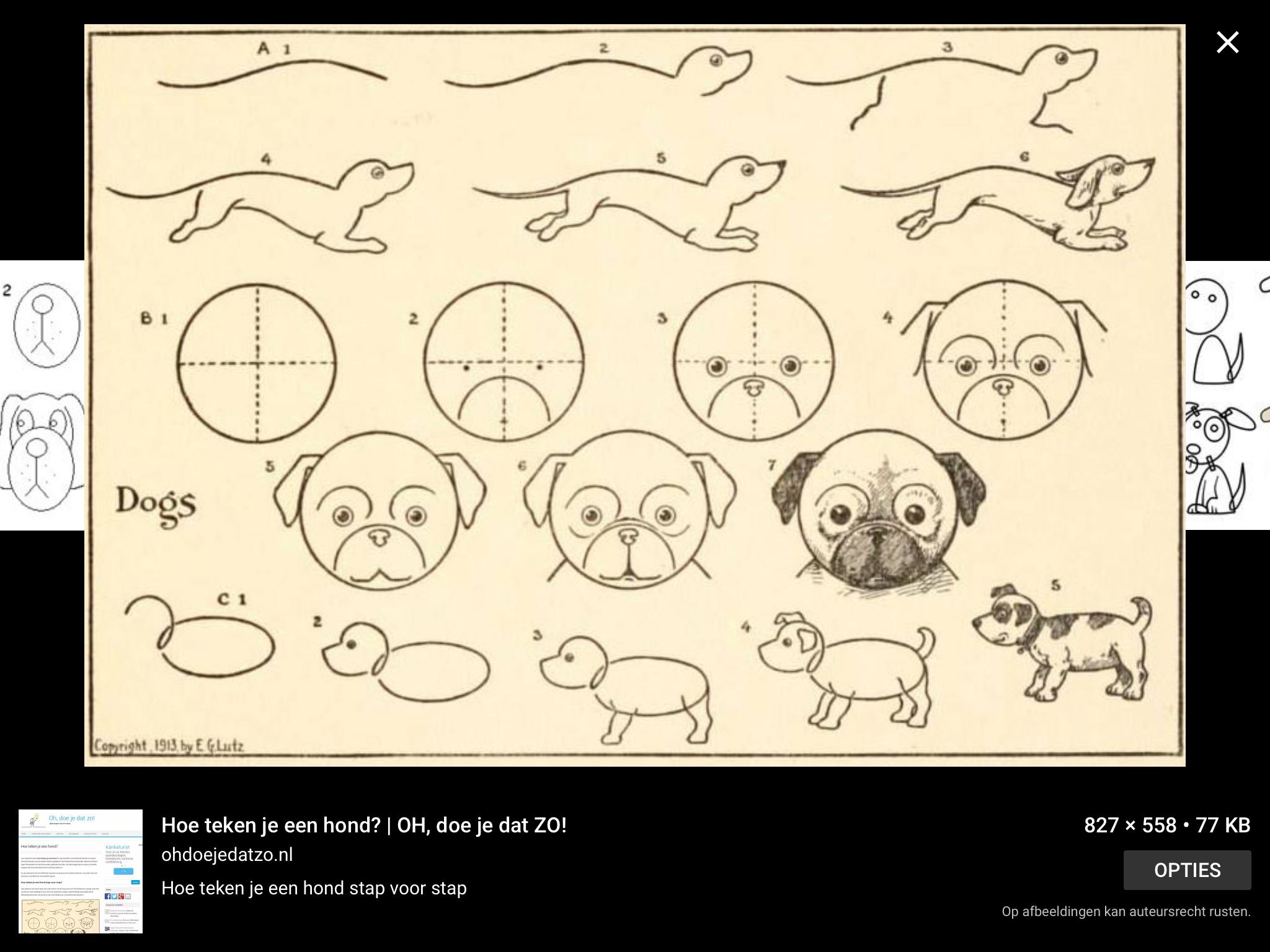 tekenen」おしゃれまとめの人気アイデア|pinterest |bulldoggamer