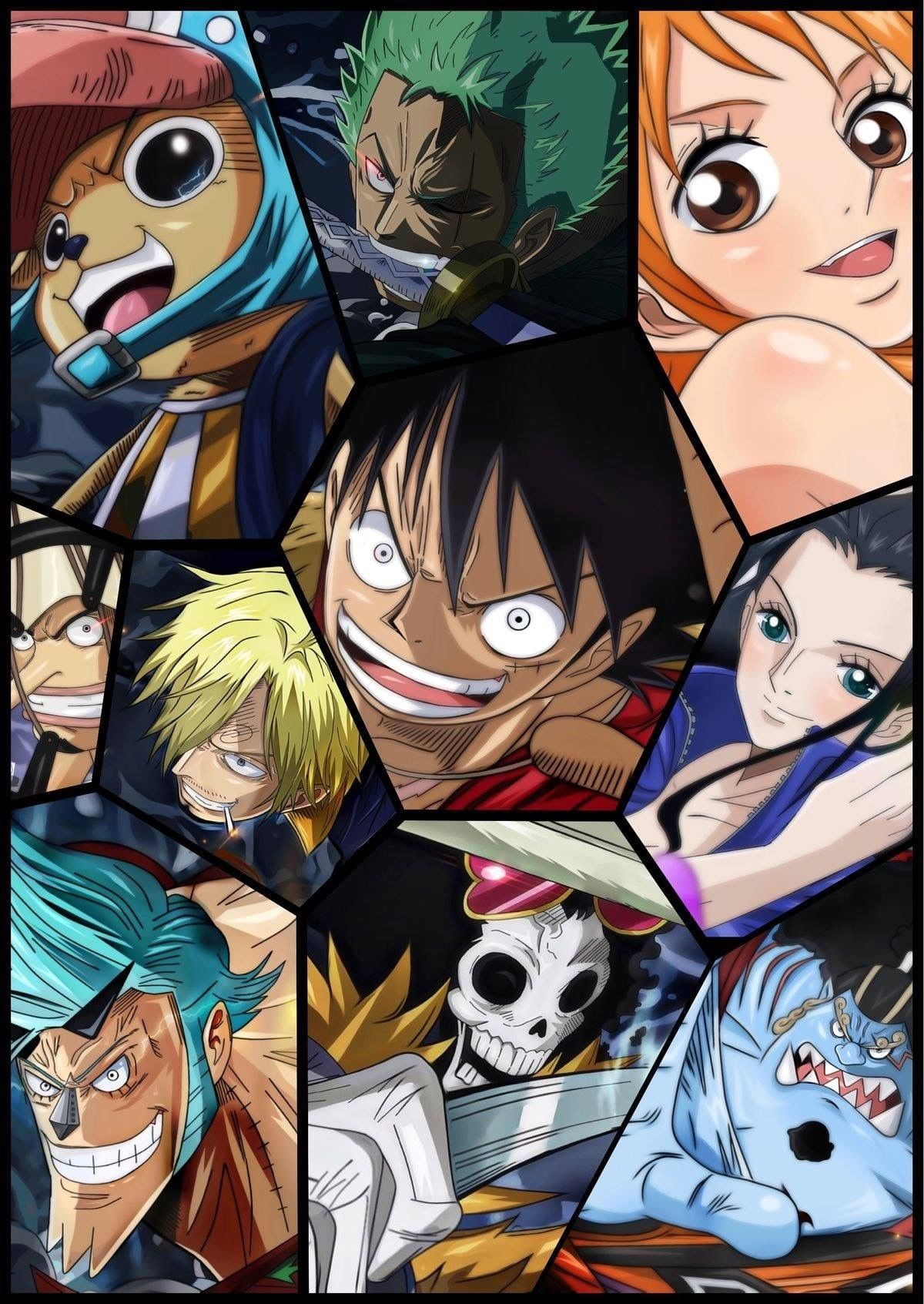 Pin By Gin D Sakila On Straw Hat Pirates With Images One Piece