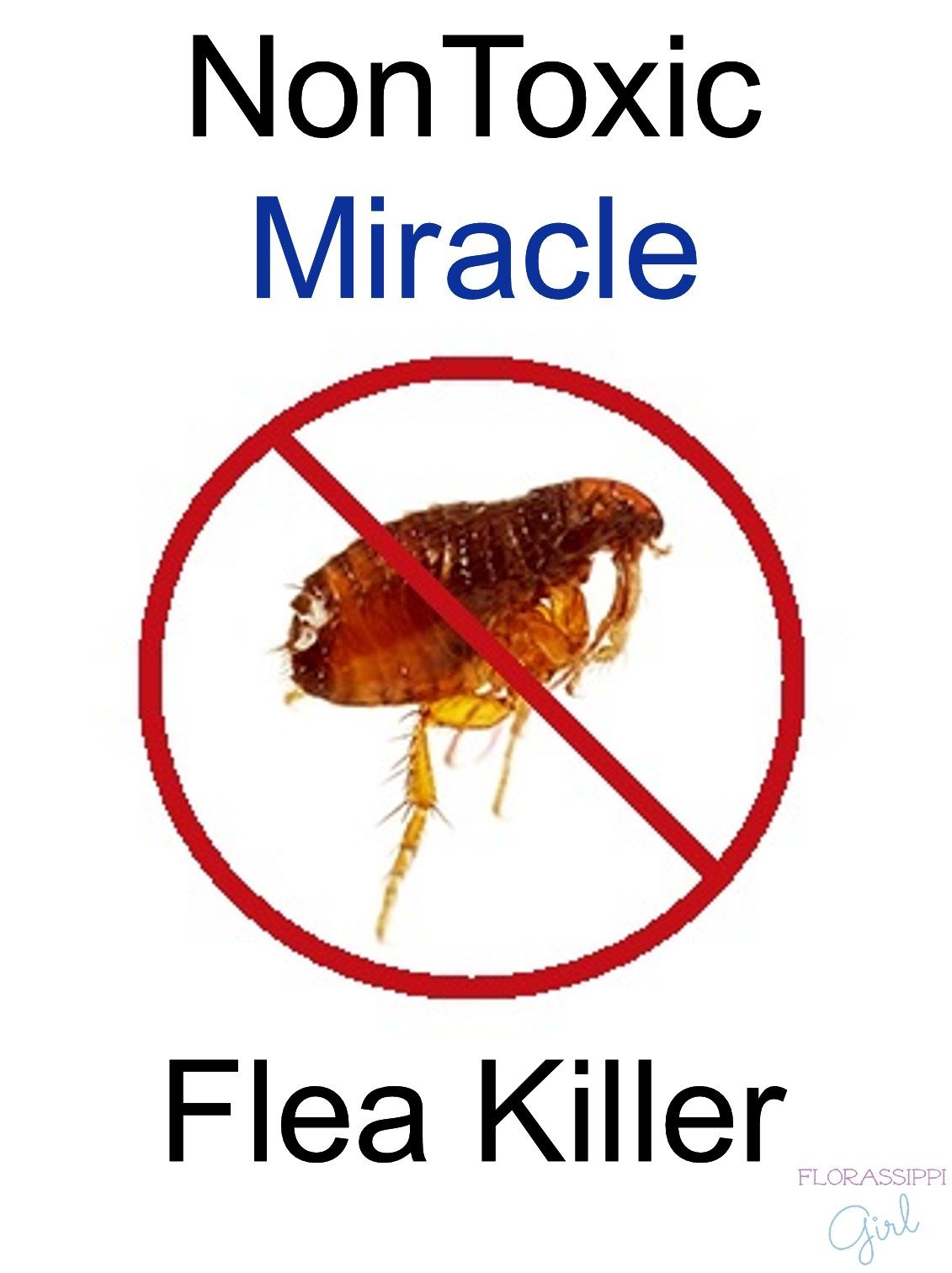 Diy Pest Control Spray Florassippi Girl Nontoxic Miracle Flea Killer