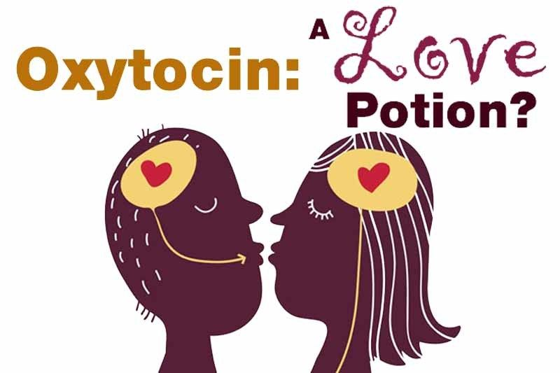 10 Amazing Facts About Oxytocin Activities In Nyc Relationship