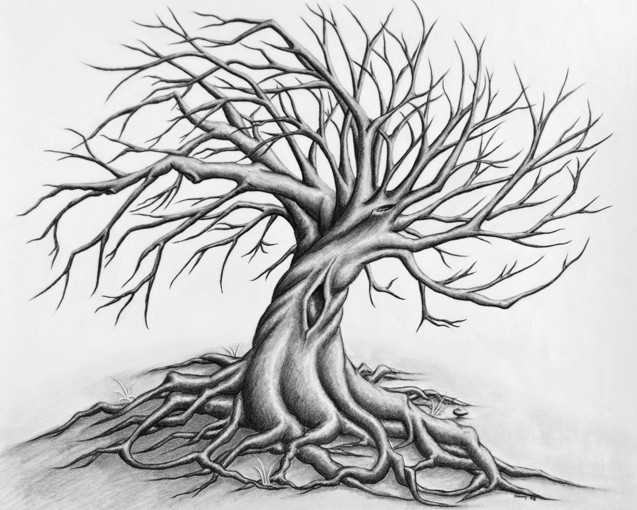 how to draw a creepy tree