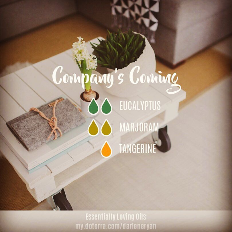 """buy online b76df 9ceac Company's Coming - Diffuser Blend . """"The key is to keep ..."""