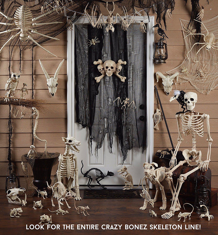 Posable Life Size Skeleton Https://amazingmusthaves.com