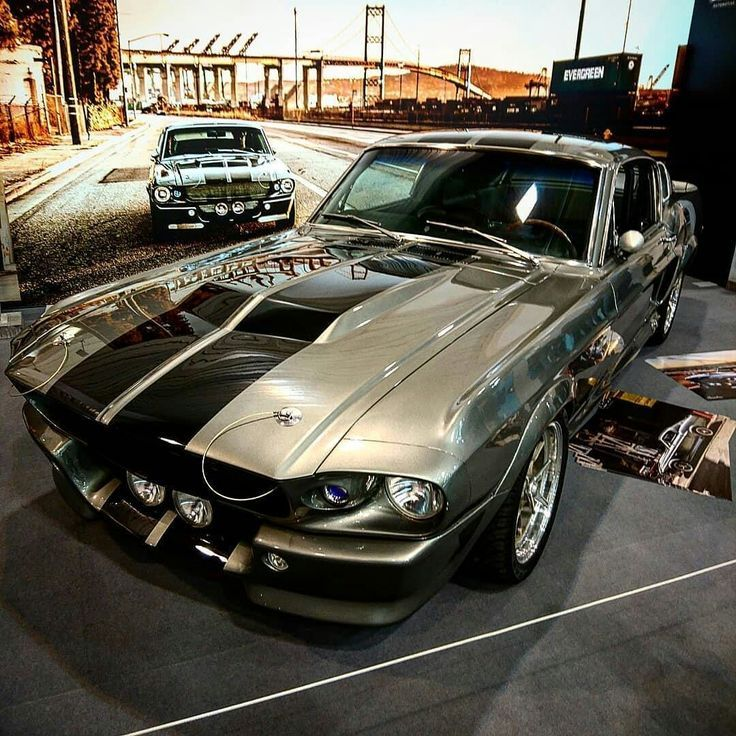 1967 Ford Mustang Shelby GT500 Grau mit schwarzen Rallye