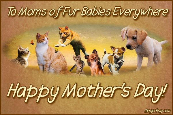 Happy Mothers Day To Moms Of Fur Babies Glitter Graphic Greeting Comment Meme Or Gif Fur Baby Mom Happy Mothers Day Images Pet Mom