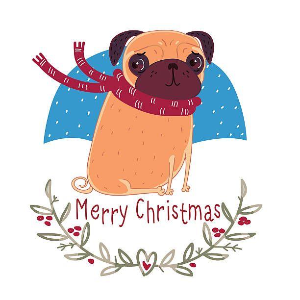 Pug 2 Dog Breed K 9 Animal Pet Hound Lap Teacup Puppy Head