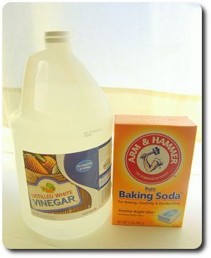 Baking Soda And Vinegar Kill Germs And Bacteria Including E Coli