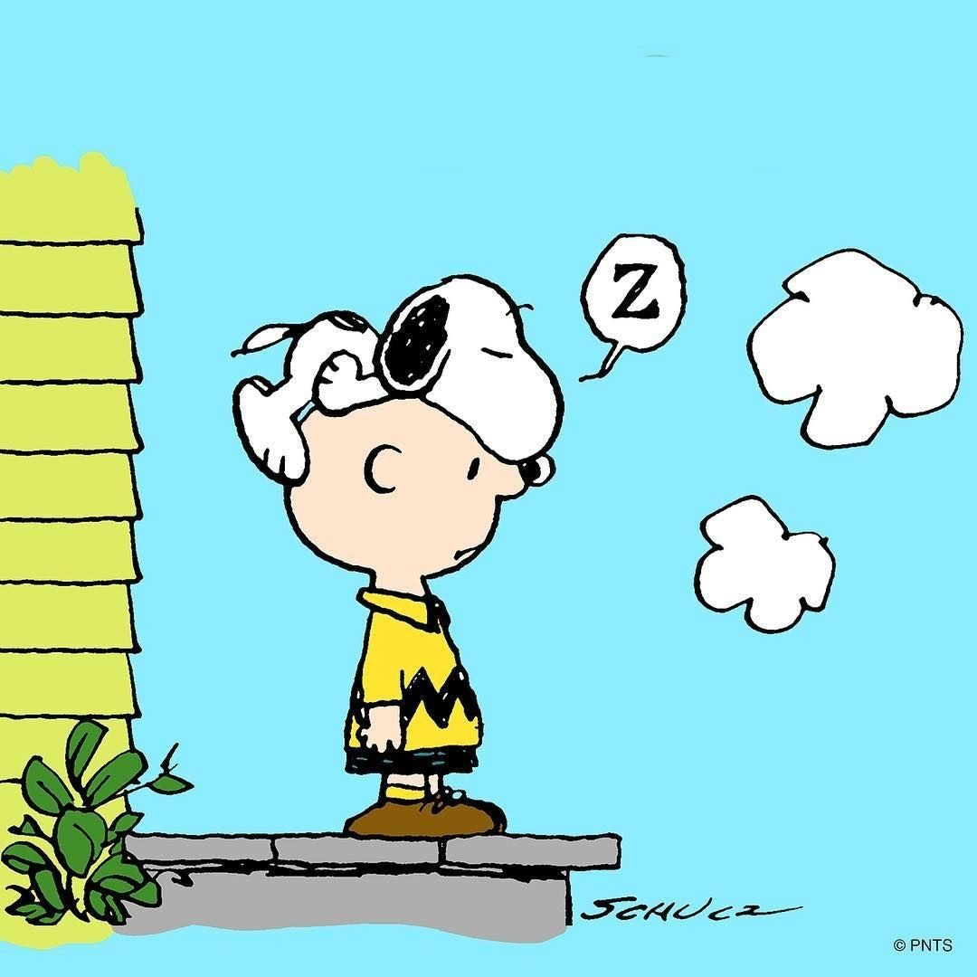 Charlie brown and snoopy charlie brown pinterest - Charlie brown bilder ...
