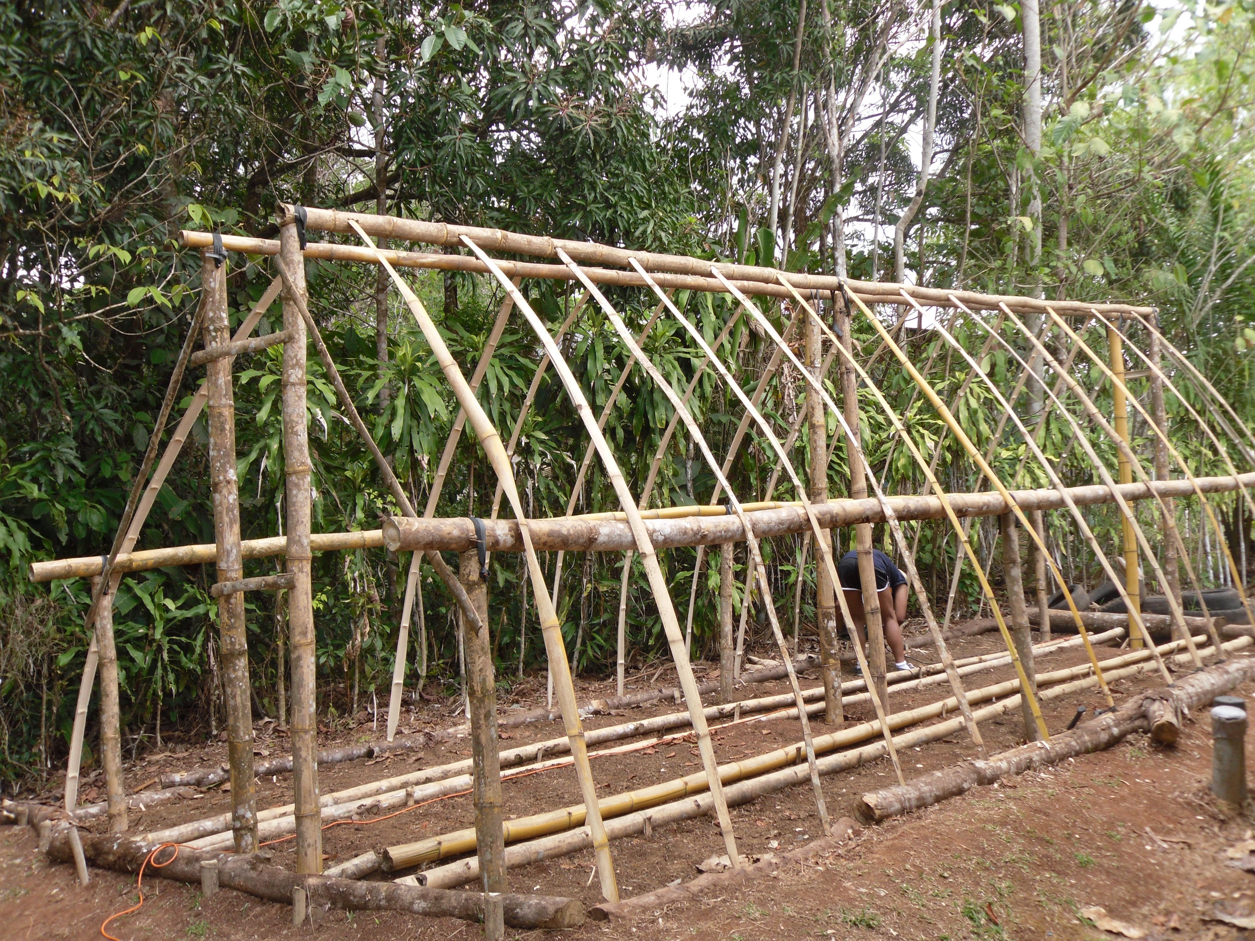 Exemple de serre en bambou / Greenhouse made with bamboo | Jardinage ...