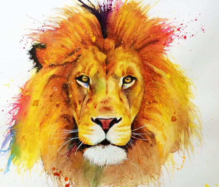 Lion Watercolor Painting By Jonathan Knight Art Animaux D